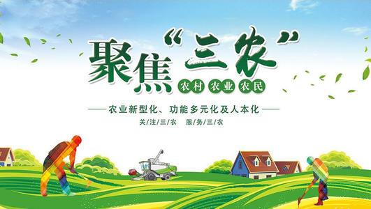 """【政策性文件】中共中央 国务院关于坚持农业农村优先发展做好""""三农""""工作的若干意见"""